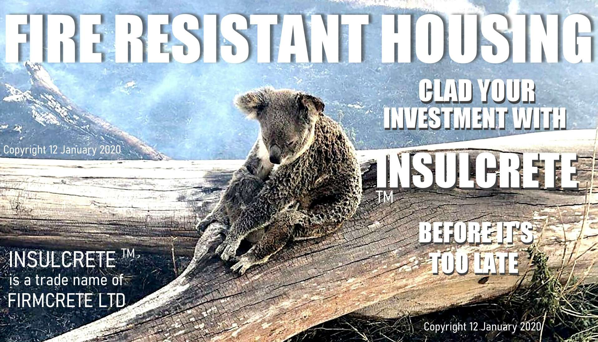 This koala bear cannot control its future, you can. Build fireproof houses in bushfire area